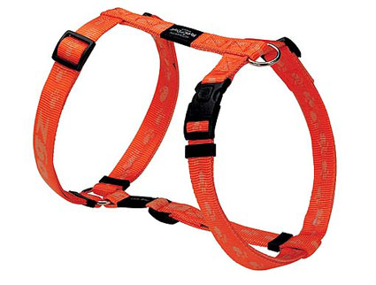 Everest Tuigje orange 1 stuks 25mm - 1
